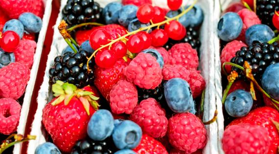 ¿Cómo eliminar bacterias de los alimentos?